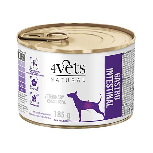 4Vets NATURAL VETERINARY EXCLUSIVE GASTRO INTESTINAL 185g dog